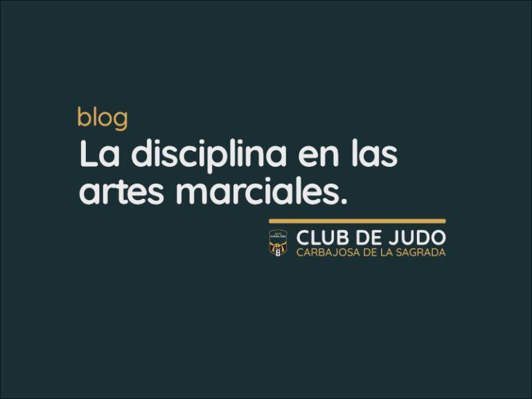Disciplina y artes marciales